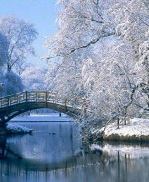 دانلود رایگان پاورپوینت فصل زمستان - دانلود پاورپوینت فصل زمستان - دانلود پاورپوینت در مورد زیبایی زمستان- دانلود رایگان پاورپوینت در مورد فصل زمستان - دانلود رایگان پاورپوینت زیبایی فصل زمستان - دانلود پاورپوینت در مورد زیبایی زمستان